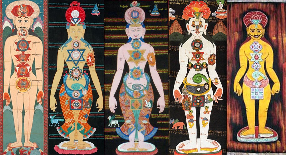 ancient pictures of human chakras show do animals have chakras